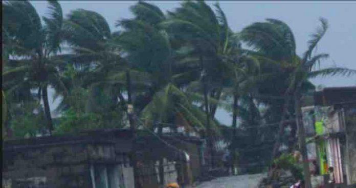 Cyclone Train Updates